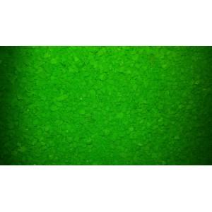 Anglická vločka zelená